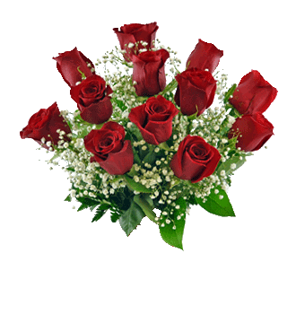 6 Red Long-Stem Roses-12 Red Long-Stem Roses