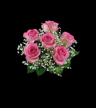 6 Pink Long-Stem Roses