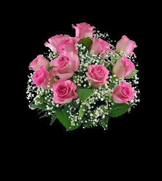 6 Pink Long-Stem Roses-12 Pink Long-Stem Roses