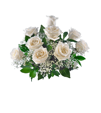 9 White Long-Stem Roses