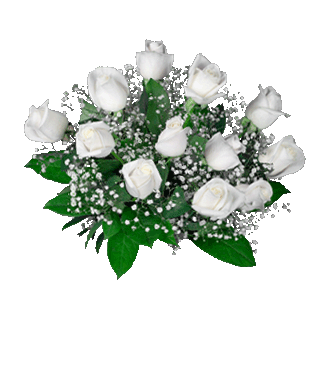 6 White Long-Stem Roses-12 White Long-Stem Roses