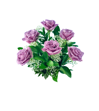 6 Lavender Long-Stem Roses-6 Lavender Long-Stem Roses
