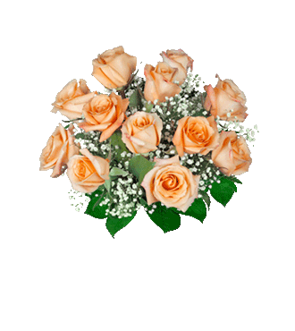 12 Orange Long-Stem Roses