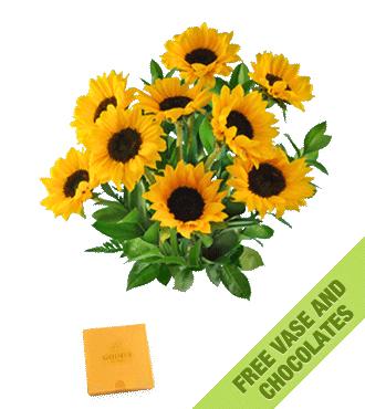 Sunflowers FREE Vase & Chocolate Box
