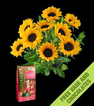 Sunflowers FREE Vase & Chocolate Bag
