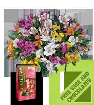 Multi-Color Peruvian FREE Vase & Chocolate Bag