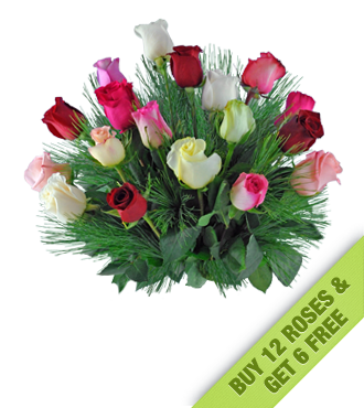 Buy 12 Get 6 FREE Holiday Mixed Roses