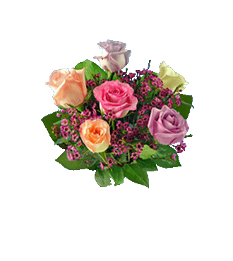 6 Multi-Color Long-Stem Roses