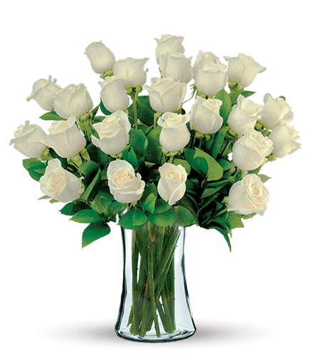 24 White Long-Stem Roses