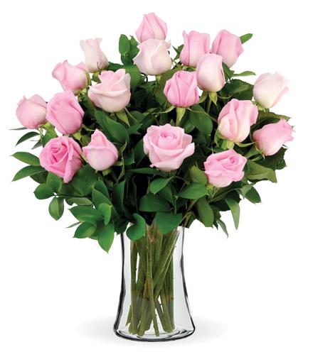 12 Pink Long-Stem Roses-18 Pink Long-Stem Roses