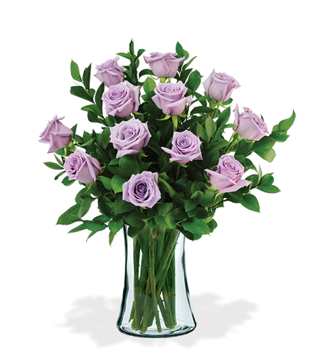 12 Lavender Long-Stem Roses-12 Lavender Long-Stem Roses