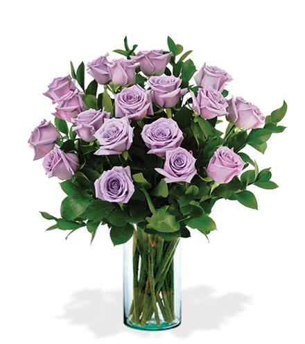 18 Lavender Long-Stem Roses