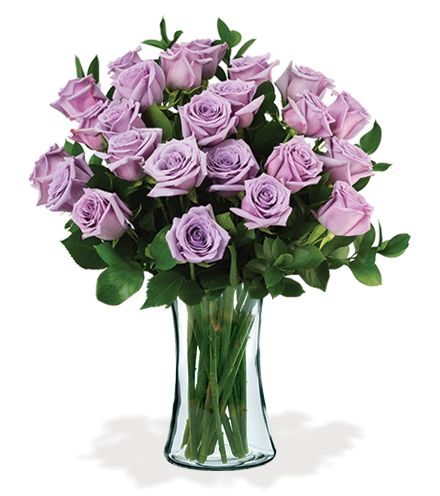 12 Lavender Long-Stem Roses-24 Lavender Long-Stem Roses