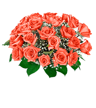 24 Orange Long-Stem Roses