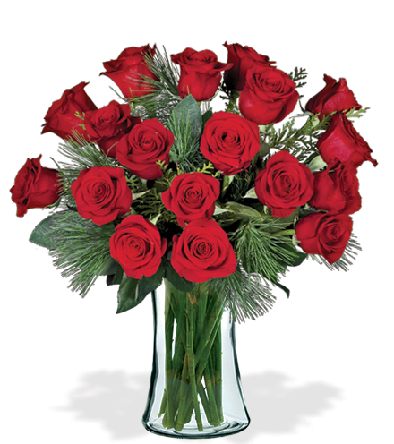 18 Red Holiday Roses