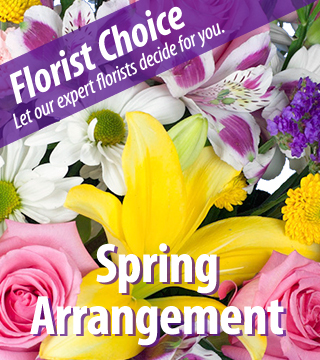 Florist Choice - Spring-Greater