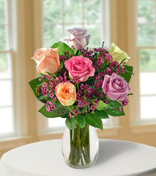6 Pastel Multi-Color Long-Stem Roses