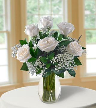 6 White Long-Stem Roses