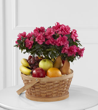 FTD® Encircling Grace™ Fruit & Plant Basket-FTD® Encircling Grace™ Fruit & Plant Basket
