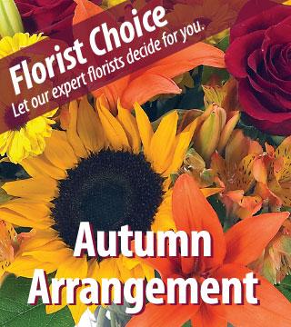 Florist Choice - Autumn - Greatest