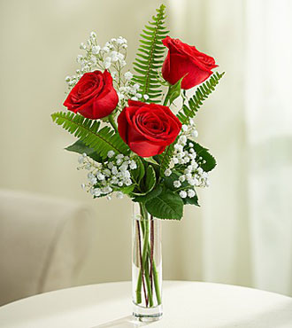 3 Red Long-Stem Roses