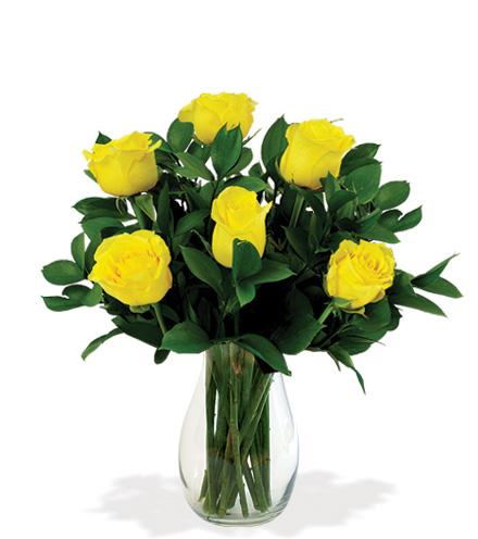 6 Yellow Long-Stem Roses