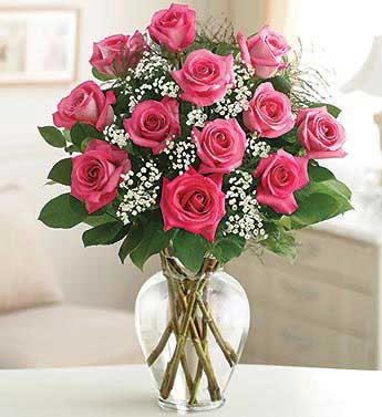 Premium Dozen Roses