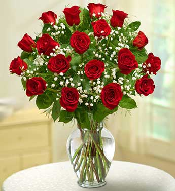18 Premium Long Stem Roses-Red