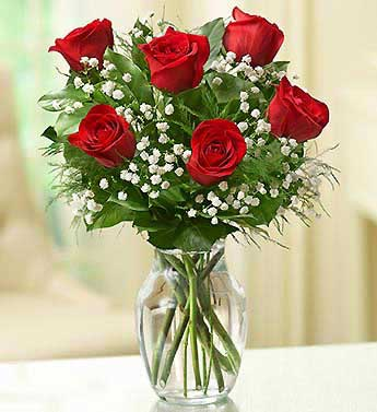Red Roses - 6 Stems