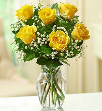 Yellow Roses - 6 Stems
