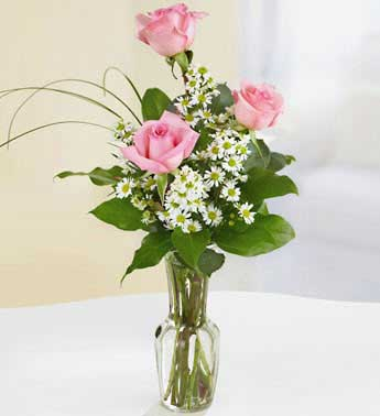 Pink Roses - 3 Stems