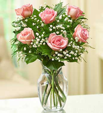Pink Roses - 6 Stems
