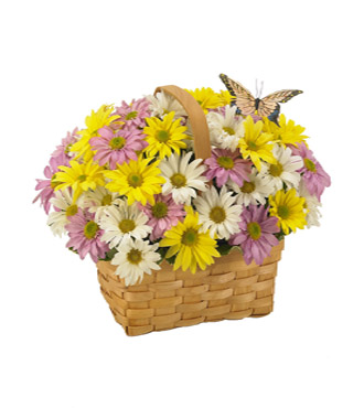 Daisy a Day Easter Basket
