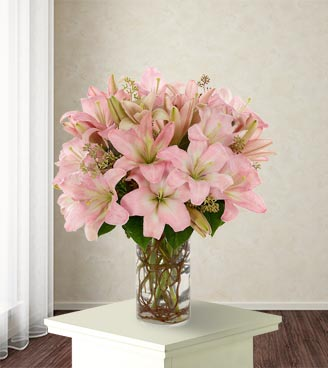Simply Lily Pink