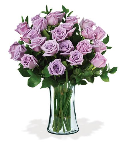 24 Lavender Long-Stem Roses