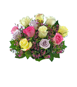 12 Pastel Multi-Color Long-Stem Roses