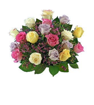 18 Pastel Multi-Color Long-Stem Roses