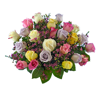 24 Pastel Multi-Color Long-Stem Roses