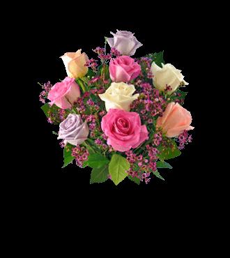 9 Pastel Roses FREE Vase