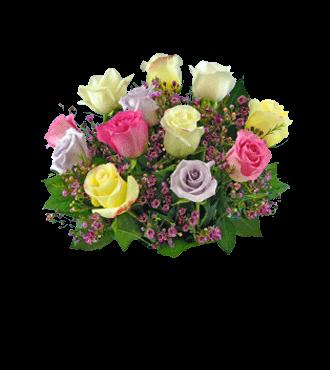 12 Pastel Roses FREE Vase