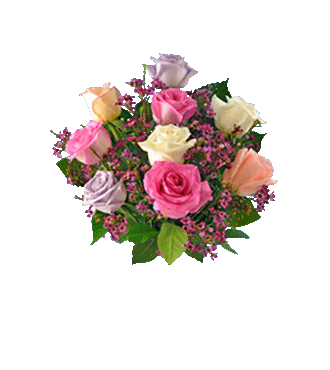 9 Pastel Multi-Color Long-Stem Roses