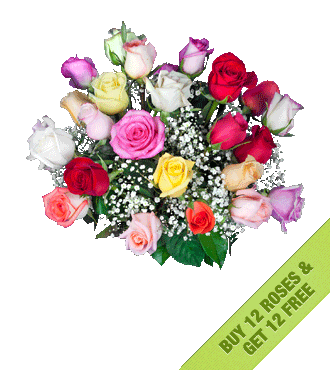 Buy 12 Multi-Color Roses Get 12 FREE
