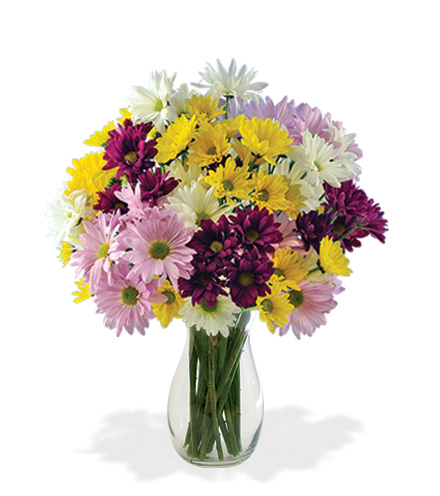 Daisy Smiles Bouquet - Greater