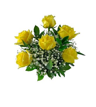 6 Yellow Long-Stem Roses