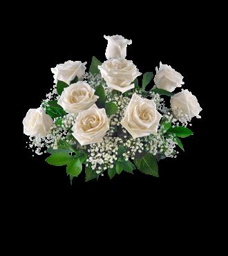 9 White Long-Stem Roses