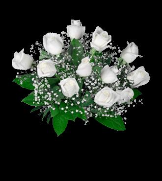 12 White Long-Stem Roses