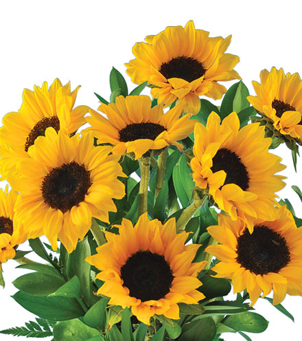 Lazy Day Sunflowers Bouquet - Greater
