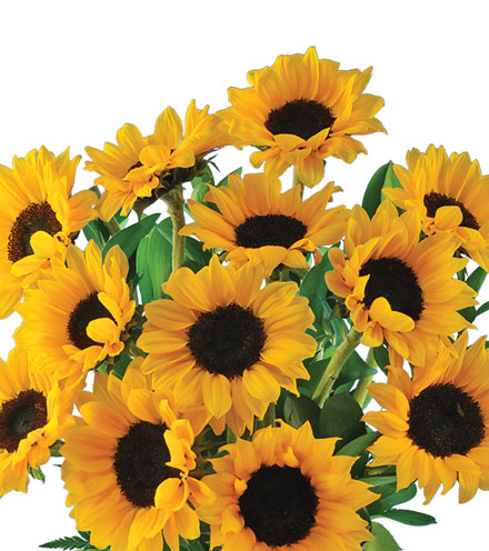 Lazy Day Sunflowers Bouquet - Greatest