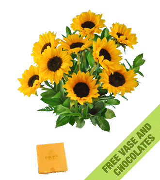 Sunflowers FREE Vase & Chocolate Box