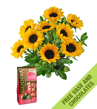 Sunflowers FREE Vase & Chocolate Bag
